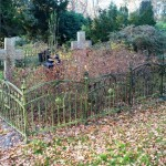some overgrown graves
