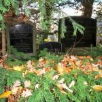 some hidden grave stones