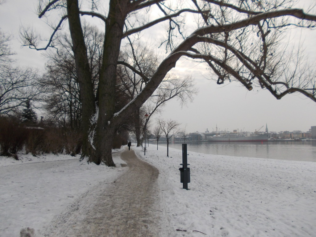 Path in Gehlsdorf
