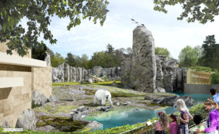 Animation des neuen Polariums, Foto: Zoo Rostock
