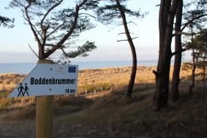 Nordic Walking im Seebad Lubmin, Foto: TV Vorpommern